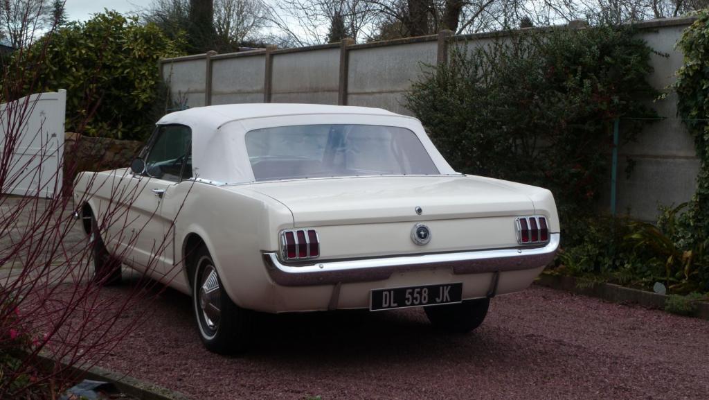 ford mustang 1965 v hicules bretagne roadster vente de voitures de collection en normandie. Black Bedroom Furniture Sets. Home Design Ideas